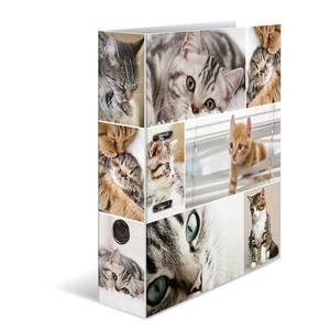 Bilde av HERMA ringperm i kartong, Katter (10 pakk)